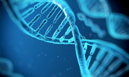 El sueño ayuda a reparar el ADN dañado de las neuronas