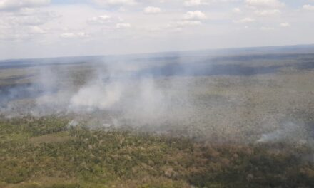 Canadá apoya a Guatemala para combatir los incendios forestales