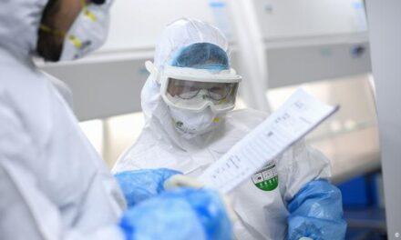 Grupo de expertos de la OMS llega a Wuhan para investigar el origen del COVID-19