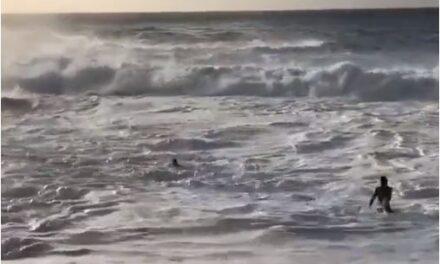 El surfista australiano Mikey Wright salva a una mujer a punto de ahogarse en playa de Hawaii