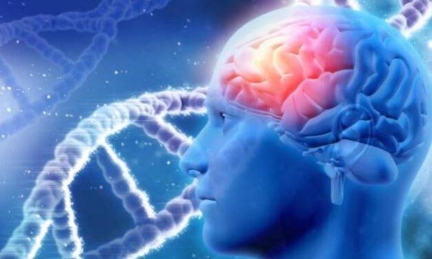 La enfermedad del Alzheimer y sus principales síntomas