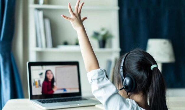 Zoom y cámaras web: cómo proteger la privacidad de los menores