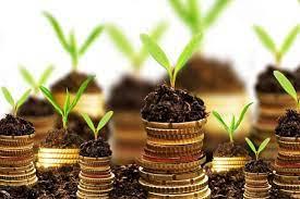 Banco Europeo de Inversiones manifiesta interés en financiamiento climático para Guatemala